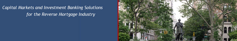 New View Advisors